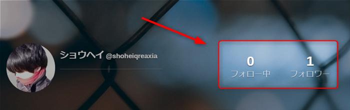 QREAXIAのフォロー数&フォロワー数