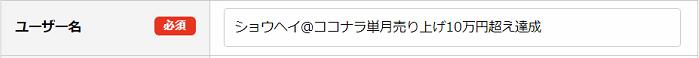 スキルクラウドのユーザー名の具体例